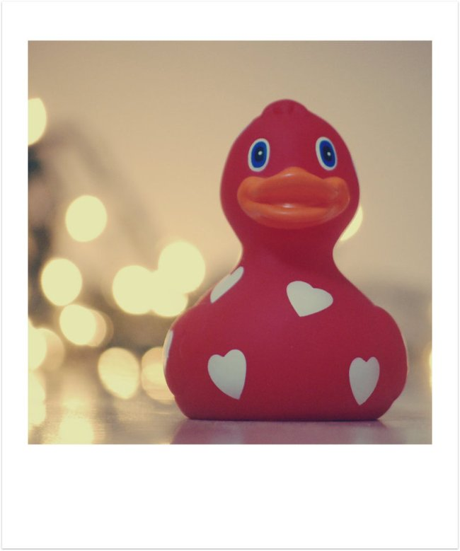 Love_Duck_by_BeciAnne